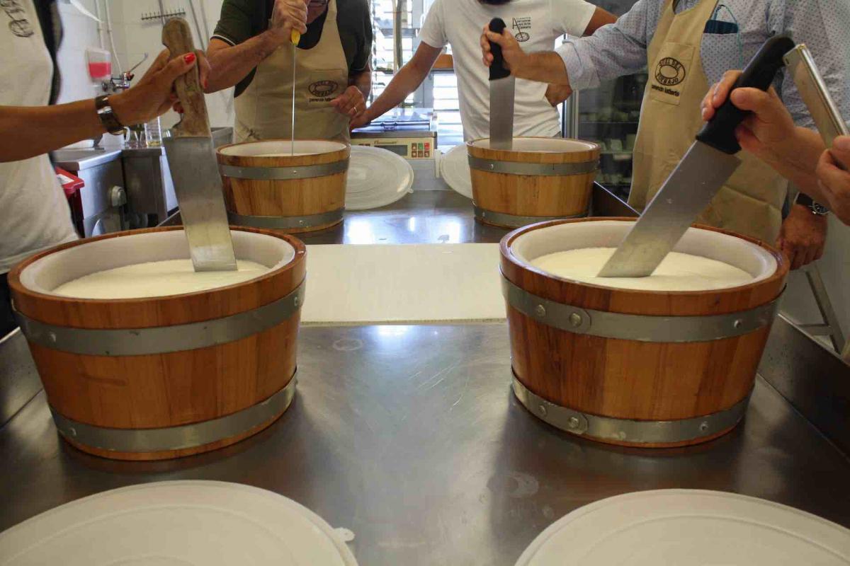 percorsi enogastronomici in Veneto e visita all'Accademia Internazionale dell'Arte casearia - Una vacanza in Veneto per buongustai di prodotti tipici veneti e vini veneti sulle Colline del Prosecco