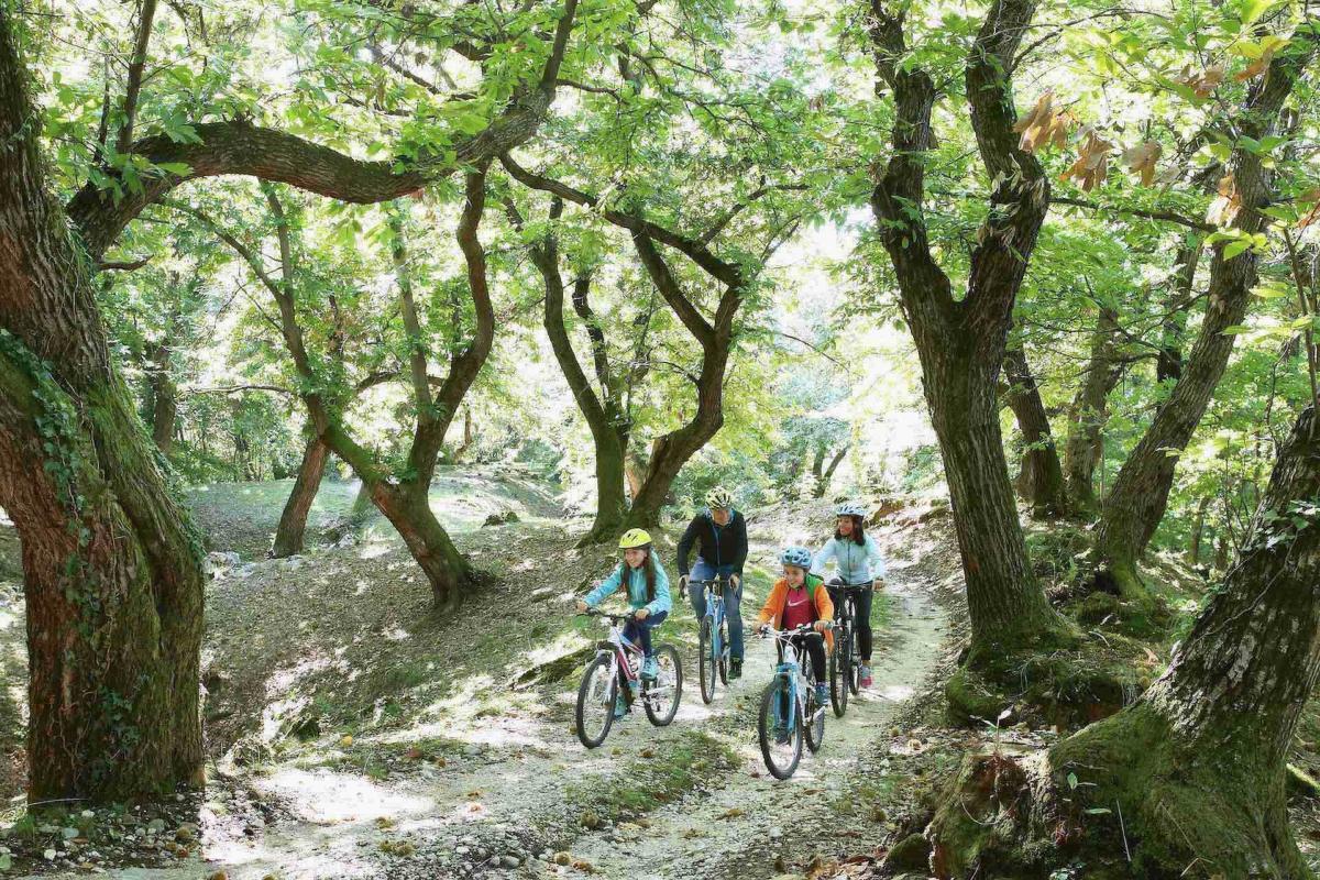 Tour in mountain bike sulle Colline del Prosecco durante la tua vacanza in famiglia in Veneto