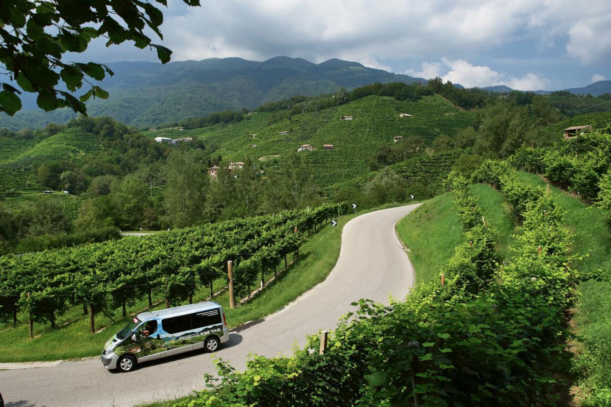 Tour del prosecco in Veneto sull'area di produzione del Prosecco Superiore DOCG, percorri le colline del Prosecco con la minivan!