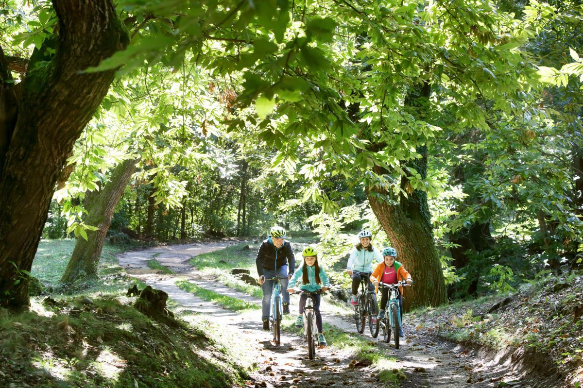 Tour in mountain bike sulle Colline del Prosecco durante la tua vacanza attiva in Veneto con bambini