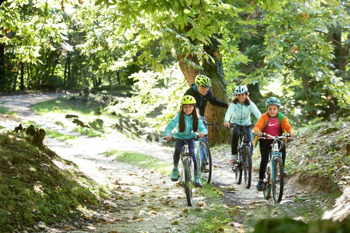 Vacanza in bicicletta con la famiglia in Veneto - Tour semplici in mountain bike in Veneto