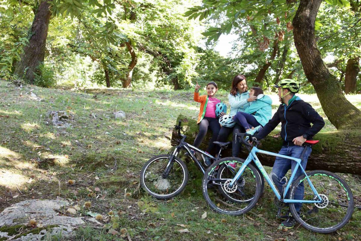 Itinerario in mountain bike sulle Colline del Prosecco durante la tua vacanza in Veneto con i bambini
