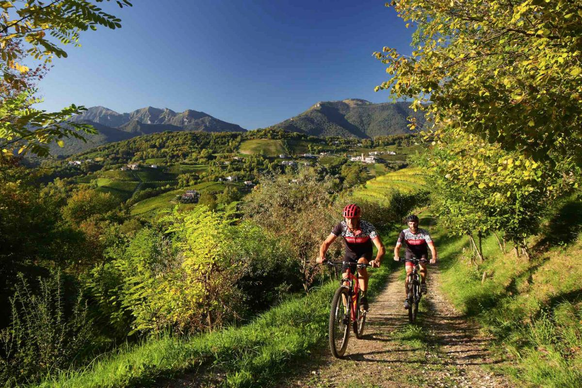 vacanza in bicicletta sulle Colline del Prosecco Superiore, la tua esperienza bike in Veneto tra osterie, castelli, borghi e la miglior offerta enogastronomica in Italia
