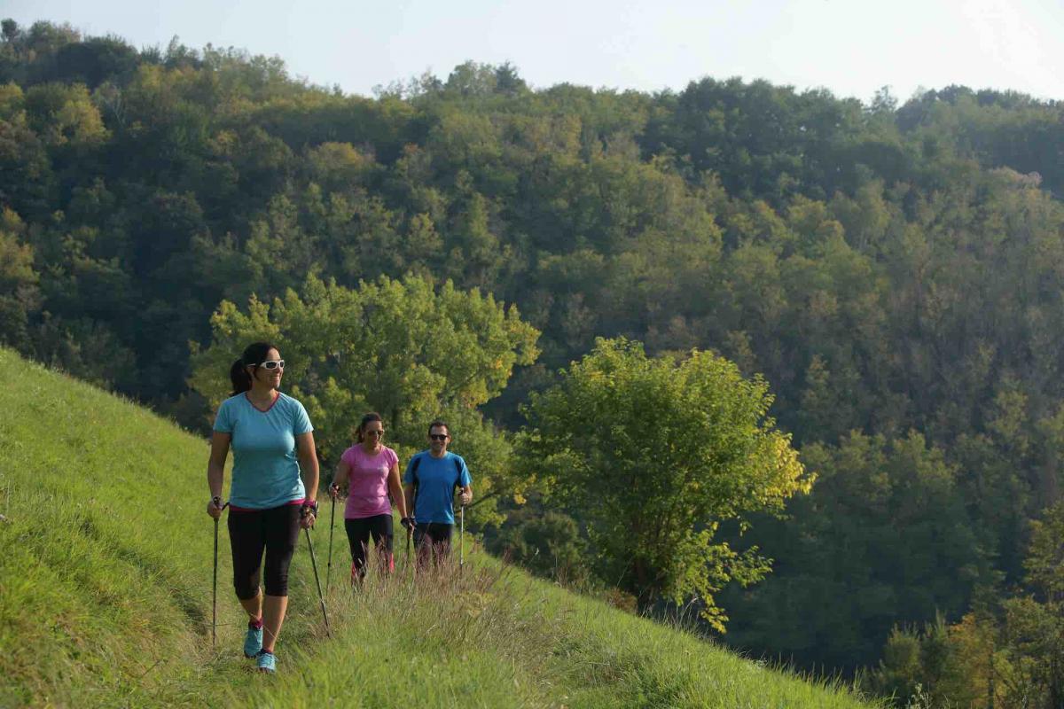 Nordic Walking sulle Colline del Prosecco Superiore durante la tua vacanza attiva in Veneto