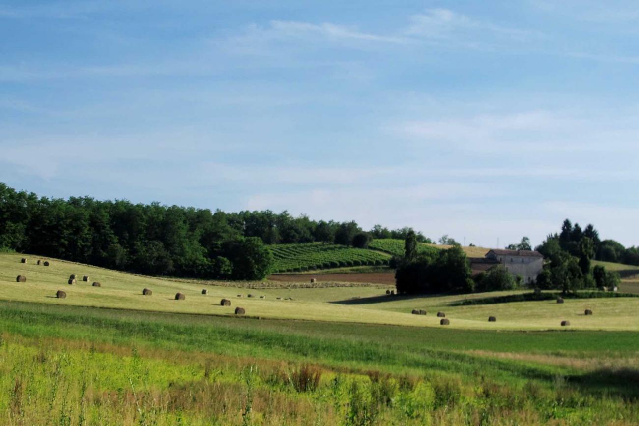 visitare il Montello sulle Colline del Prosecco durante le tue vacanze in Veneto sulla Strada del Vino