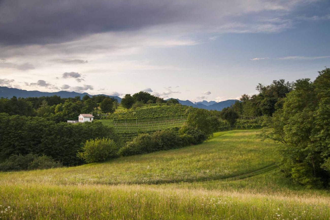 Il Montello e il Montelletto in Veneto da fare in mountain bike o itinerario trekking