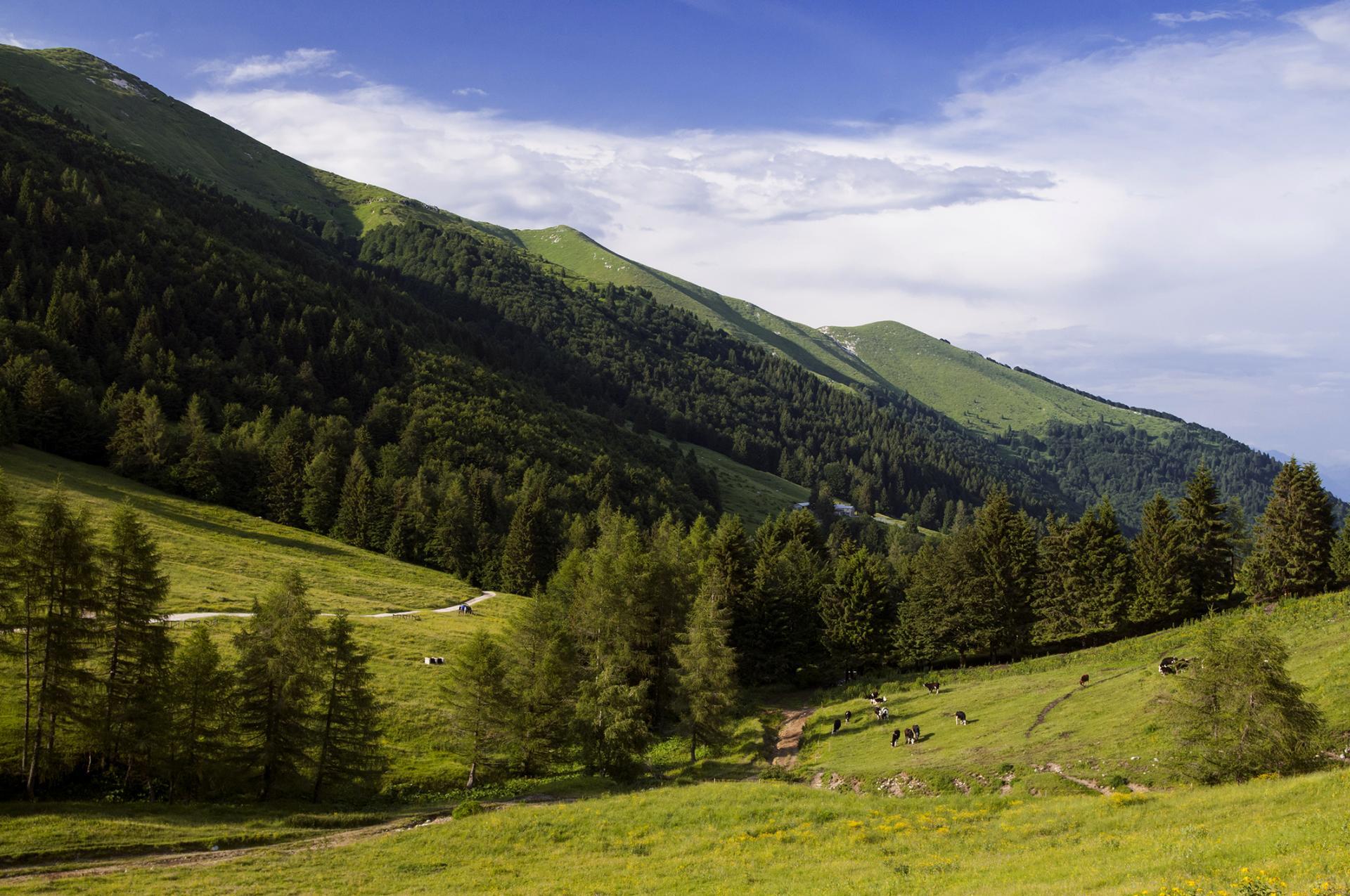 Monte Grappa, visita obbligata durante le tue vacanze in Veneto sulle Colline del Prosecco Valdobbiadene