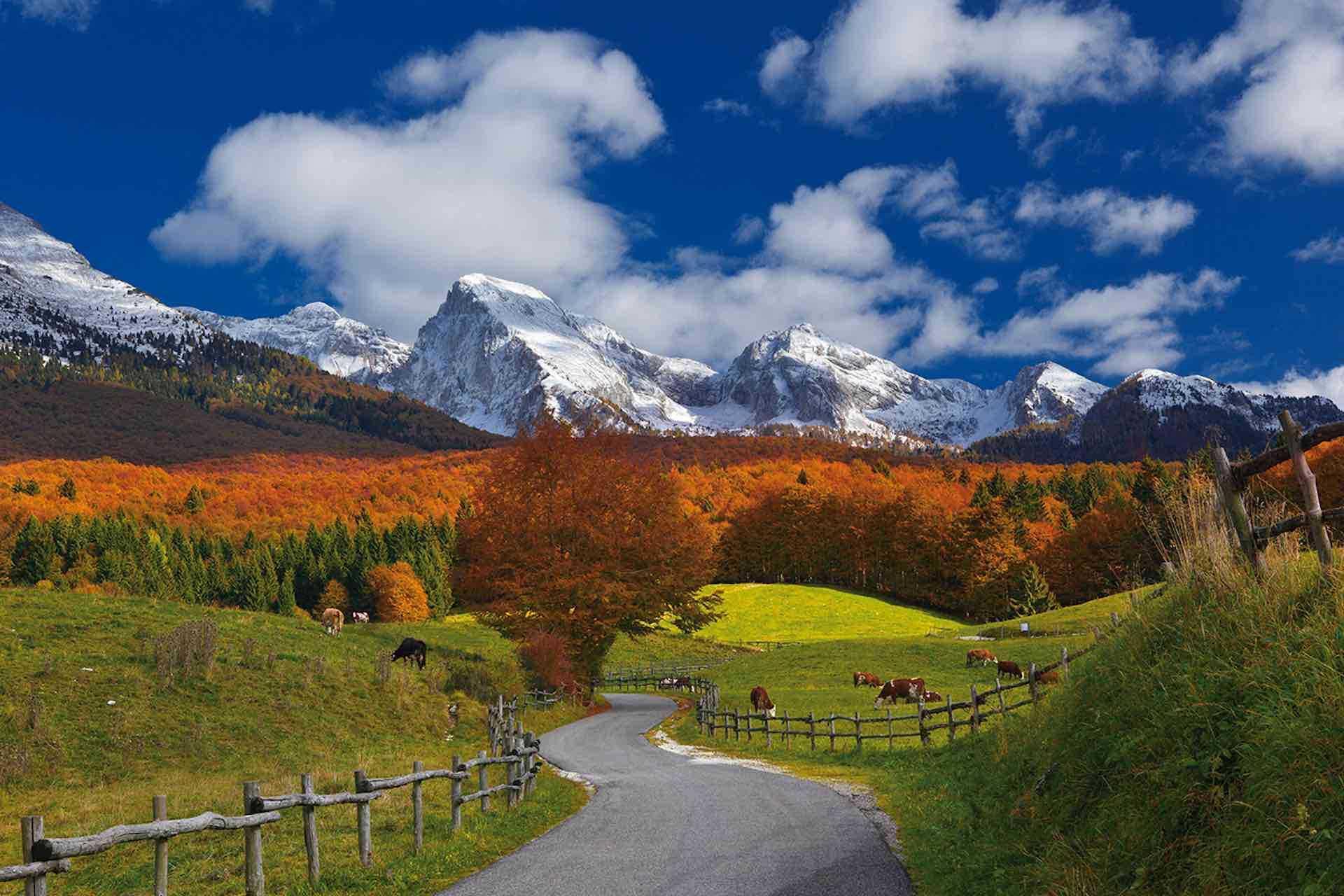 Visita la Foresta del Cansiglio a ridosso delle Colline del Prosecco Superiore