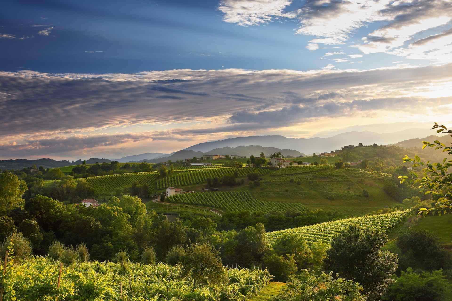 Strada del Vino sulle Colline del Prosecco Valdobbiadene in Veneto