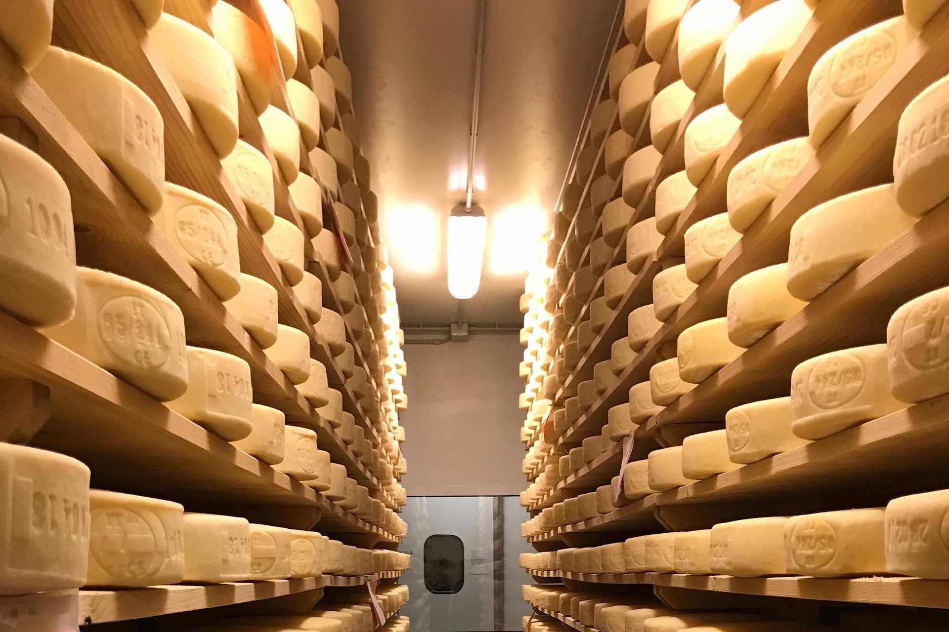 visita l'accademia internazionale dell'arte casearia alla scoperta dei formaggi veneti, vere esperienze grastronomiche in Veneto