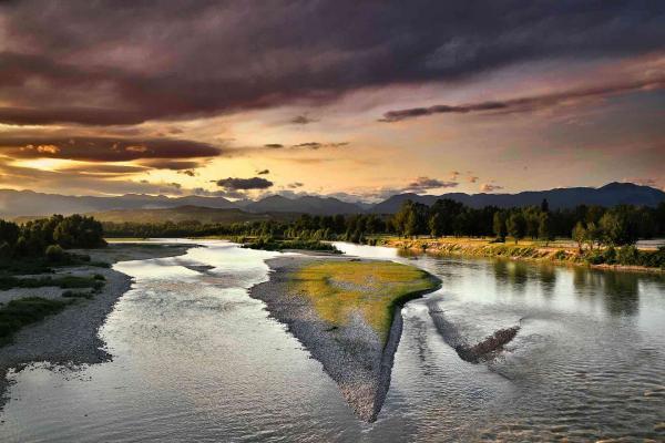 Il fiume Piave, scrigno di biodiversità