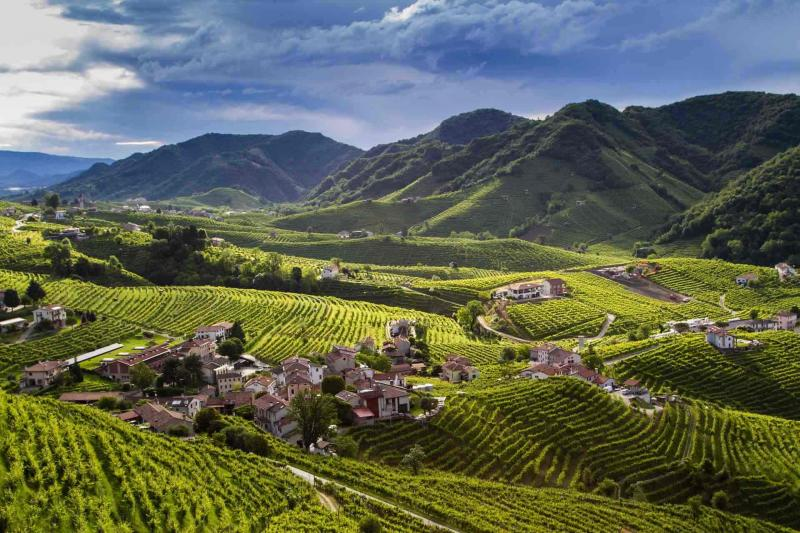 The DOCG Cartizze Hills:  a spellbinding vineyard landscape