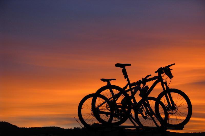 Night Bike 2021
