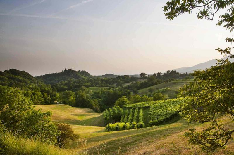 The Asolo Hills: walking and running routes
