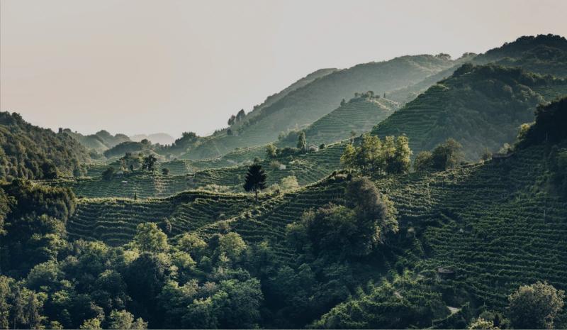 Le nostre Colline sono Patrimonio UNESCO