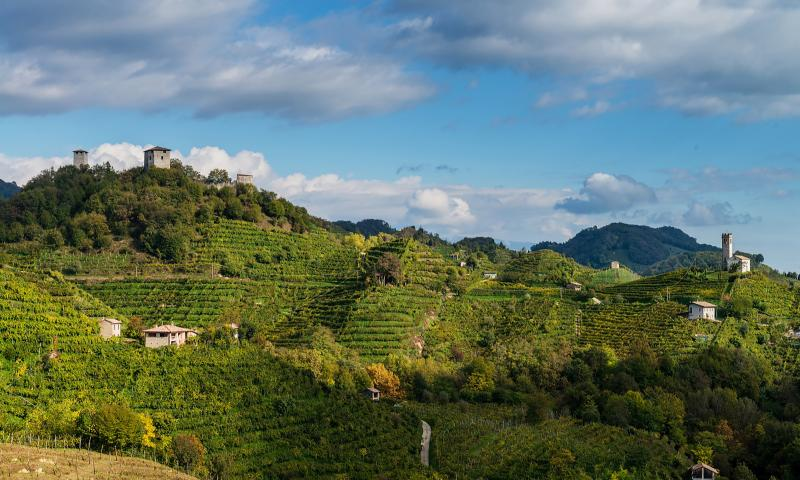 Walking route among the vineyards to the Credazzo Towers